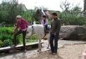 Izjādes ar ponijiem